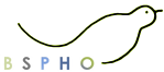 BSPHO – Belgian Society of Hematology and Oncology