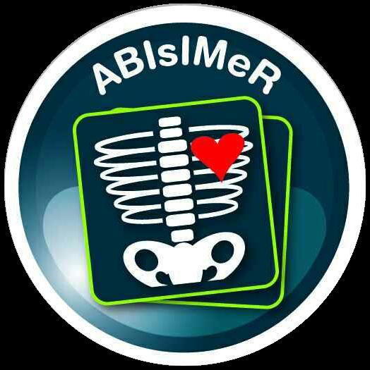 ABIsIMeR - Association Belge des Infirmiers en Imagerie Médicale et Radiothérapie